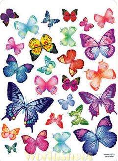【皮蛋媽的私房貨】韓國進口壁貼&壁紙*室內設計/裝飾*彩色花蝴蝶
