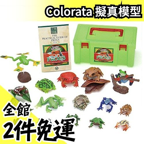 【青蛙 16隻組】日本空運 Colorata 青蛙立體圖鑑 擬真模型組 盒玩 考古生物【水貨碼頭】