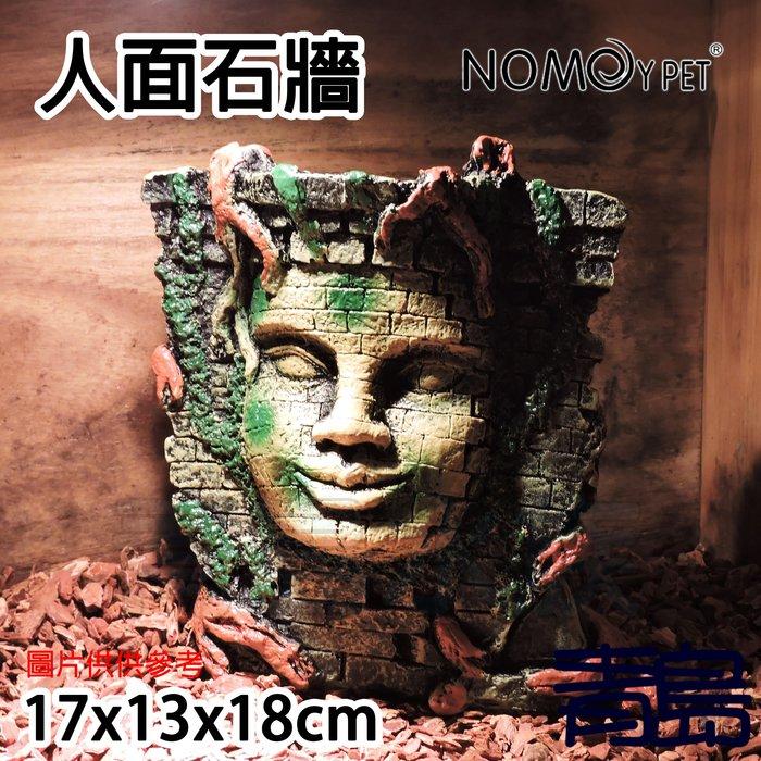 Y。。。青島水族。。。NS-68中國NOMO諾摩-吳哥窟 躲藏棲息 造景裝飾 爬蟲 蜥蜴 烏龜 蛇 蜘蛛 蠍==人面石牆