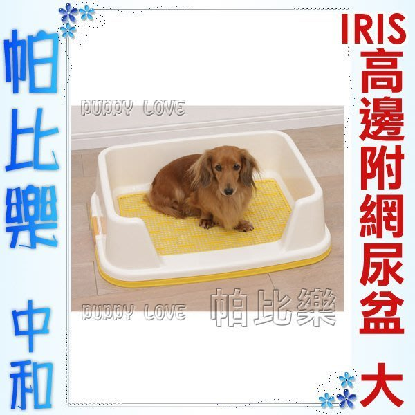 ◇帕比樂◇日本IRIS TRT-650加高邊附網,狗便盆,加高 網狀設計,防止尿尿上到外面