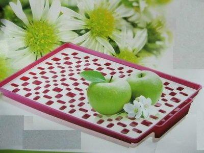 【Treewalker露遊】高級斜型蔬果滴水盤 水果盤 蔬果盤 滴水盤 濾水盤 杯子濾水器皿