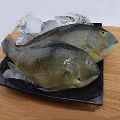 【澎湖石硓魚-約2斤/組】新鮮魚貨乾淨處理產地直送(秤重計價)-2501003