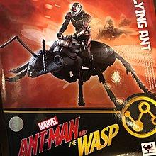 全新 日版 SHF ANTMAN FLYING ANT MARVEL AVENGERS ENDGAME S H FIGUARTS 復仇者聯盟 蟻俠 飛行螞蟻