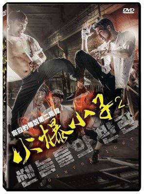 合友唱片 面交 自取 火爆小子2 Equality Before The Violence 2 DVD