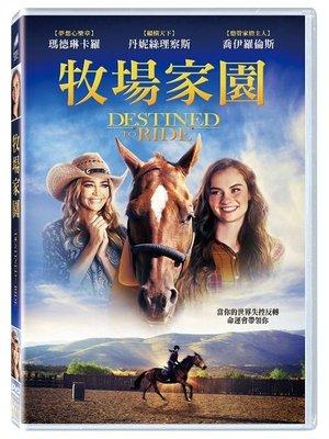 合友唱片 面交 自取 牧場家園 DVD Destined To Ride