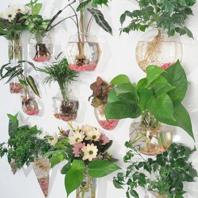 【蘑菇小隊】水培玻璃花瓶懸掛式透明插花盆壁掛小魚缸-MG2640