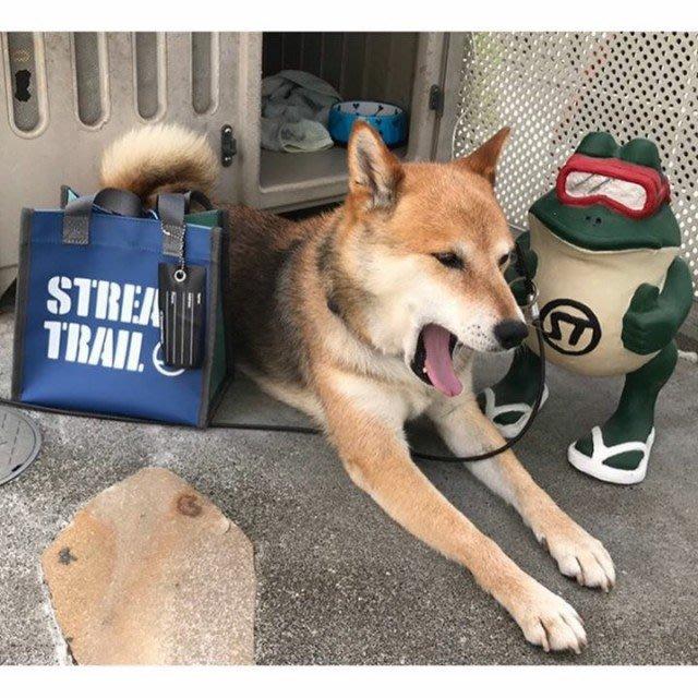 日本StreamTrail戶外防水包Dory MINI輕便袋 手提袋-上街購物.上課.超市.便當袋-天空藍+翡翠綠