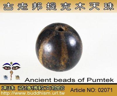 【東珠文物】古老喜瑪拉雅邦提克木天珠系列。02071