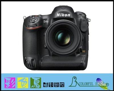 彩色鳥(相機出租 租相機 鏡頭出租 租鏡頭)租 Nikon D4S + Nikon AF-S 24-120mm F4 VR N 24-120MM出租