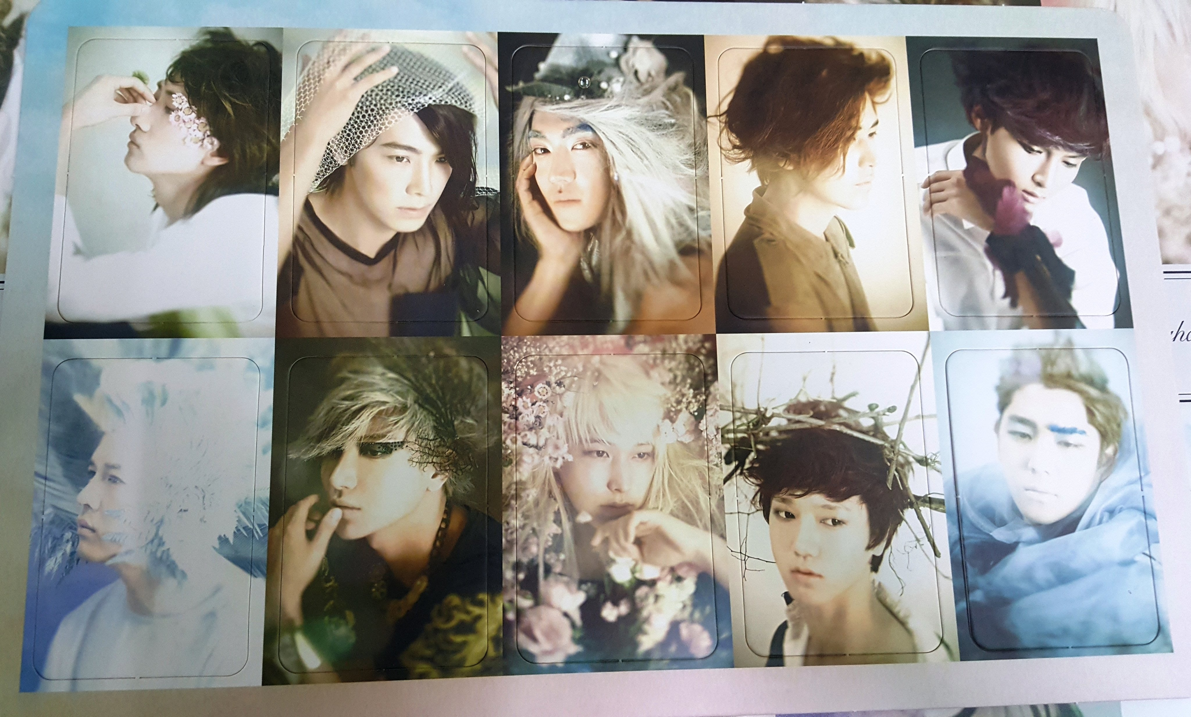 Super Junior 六輯 Sexy, Free.. 官方小卡 銀赫 東海 始源 圭賢 厲旭 利特 晟敏 藝聲 強仁