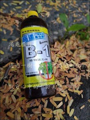 【泥龜 ☘️施達 B-1植物用活力素】B1植物活力素  園藝 資材