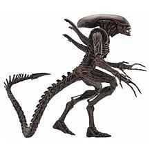 全新 NECA 14代 Alien vs Predator 異形戰場 xenomorph Alien 原型異形