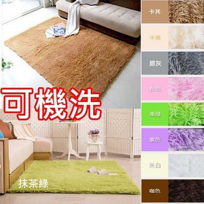 160*120cm 絲毛地毯 超細緻柔軟絲毛地毯 防滑地毯 柔軟十色 可定製尺寸 歡迎詢問 可刷卡