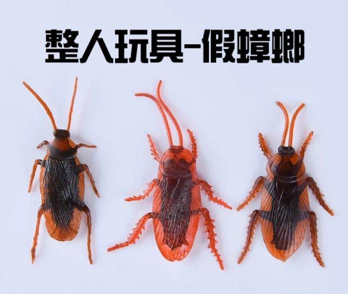 假蟑螂 塑膠蟑螂 整人蟑螂 小強 愚人節 搞笑 整人 嚇人 小禮物 整人玩具 惡作劇【CF-01A-02589】