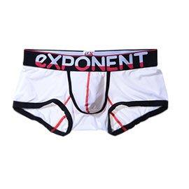 eXPONENT休閒款雙配色鬆緊帶四角褲(白)D15B0201