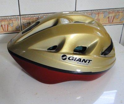 捷安特 GIANT 成人腳踏車自行車 越野車 摺疊車用座墊 附座墊套 或捷安特安全帽