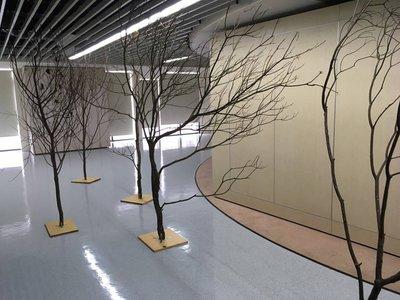 ~HAPPY屋~商業會場樹枝佈置˙婚禮樹枝佈置 新年樹枝佈置 樹幹 枯枝 枯樹 木頭˙櫥窗設計(客製化)
