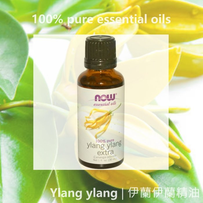 【Now Foods】30ml  伊蘭伊蘭精油 Ylang Ylang,100% 純正 | 預購