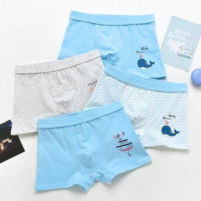 新品預購款 兒童內褲 男童內褲 四角褲 平口褲 小童 中大童內褲  鯨魚 小島 輪船