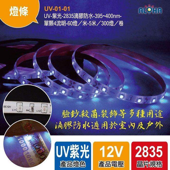 LED燈具【UV-01-01】2835滴膠防水-395~400nm帶軟條DC12V-波長395 5米長 可裁剪
