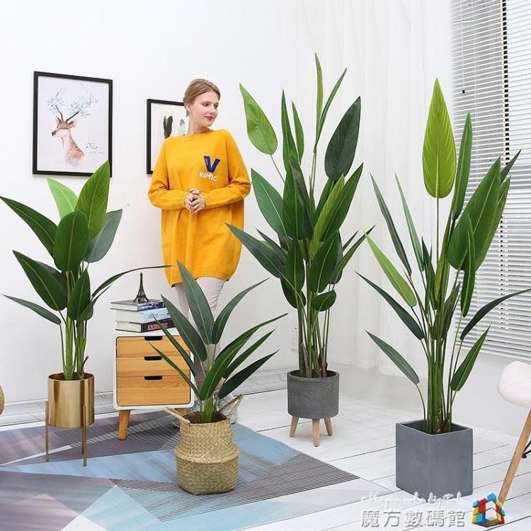 北歐仿真植物假美人蕉ins風裝飾落地創意擺件大型綠植客廳盆栽BLBH