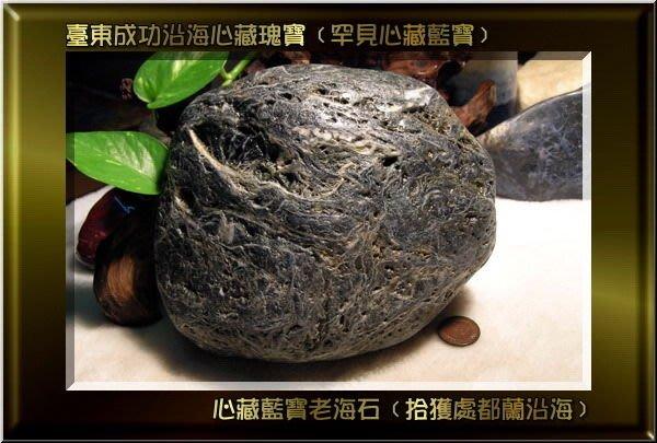 卍【陳媽媽珠料庫】卍 ﹝收藏.把玩珍寶﹞【臺東都蘭原生種罕見心藏藍寶】