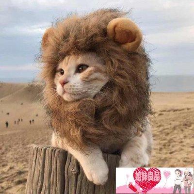 貓咪獅子頭套搞笑寵物裝扮耳朵帽子狗狗貓...
