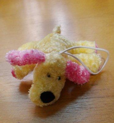 可愛大耳朵狗