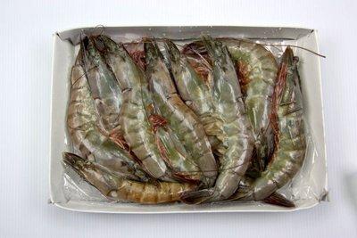 【萬象極品】活凍白蝦(16/20) /約 600g~殼薄新鮮~肉嫩味美~鮮甜便宜又好吃~
