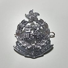 Hong Kong Auxiliary Medical Service Cap Badge
