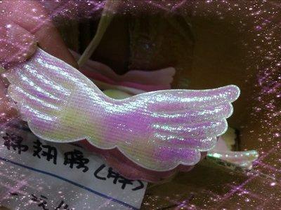 (材料王批發)小熊;花藝材料-編號G23--- 9.5公分泡棉胖翅膀ㄧ包10ㄍ*3=30元