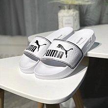 D-BOX PUMA LEADCAT 白色 黑 百搭 沙灘拖鞋 時尚運動拖鞋 男女鞋