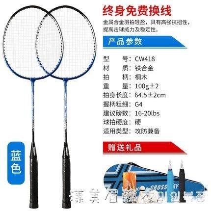 羽毛球拍全碳素纖維耐打耐用進攻型成人2支裝超輕控球單雙拍 NMS
