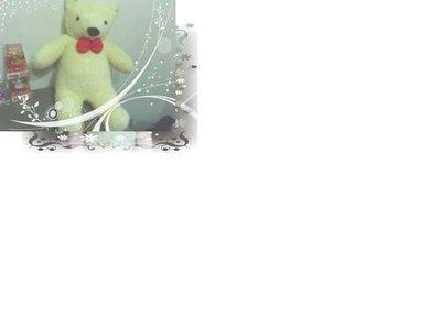 全新黃色泰迪熊玩偶(高約60cm)