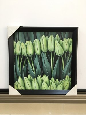 Tulip - hanging pictures