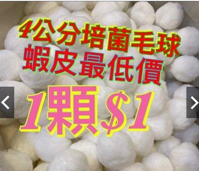 [水族最便宜]培菌球 硝化魔球 硝化毛球 硝化菌 魚缸濾材 過濾槽 培菌立方球-硝化綿球-白色直徑4公分