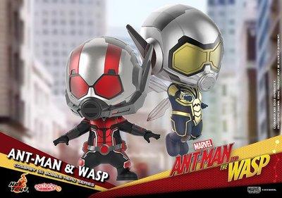 【Crows】野獸國 HOT TOYS COSBABY Marvel 漫威 ANT-MAN 蟻人 黃蜂女 (10月預購)