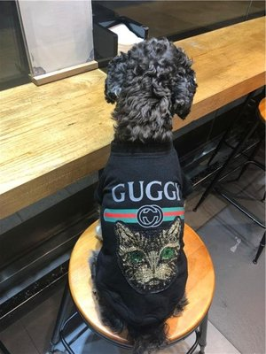 狗狗衣服夏裝薄款透氣泰迪雪納瑞比熊法斗巴哥貓咪寵物衣服小型犬