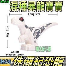 【積木反斗城】 恐龍寶寶 白 侏儸紀 恐龍 暴龍 霸王龍 迅猛龍 MG1029 MG 袋裝/相容 樂高 LEGO 積木