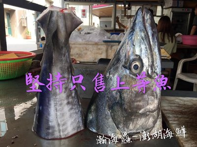 【瀚海鱻~澎湖海鮮小舖】野生海釣鮮魚【整尾土魠魚:5公斤級】真空包裝直送