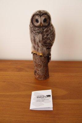 加拿大飄洋過海-Sait Spring-Wool arts貓頭鷹藝術品-Barred Owl