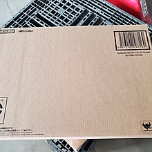 現貨 含運輸箱  日版 日本魂商店 METAL BUILD MB 合金 藍異端 鋼彈 藍色 2R 全塗裝 大劍
