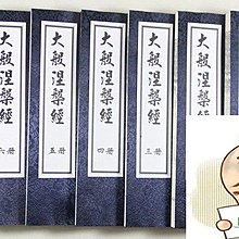 佛經典 大般涅槃經 南本 佛經 佛教典籍 8冊