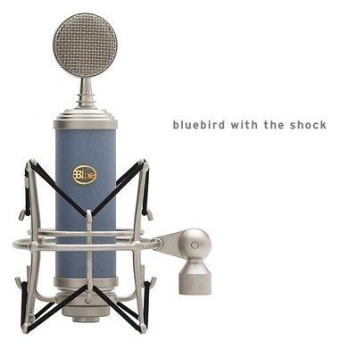 【kiho金紘】全新 Blue Bluebird 麥克風 台中市