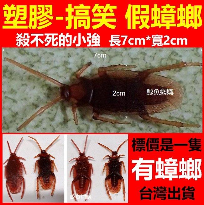 非NG貨 假蟑螂 仿真蟑螂 塑膠蟑螂 小強玩具 打不死的蟑螂 搞笑玩具 逼真惡作劇蟑螂 整人蟑螂