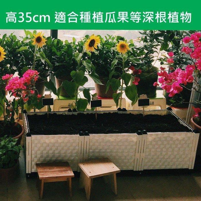 特大型加深種植箱設備陽台種菜花盆種植槽長方形白色咖啡色