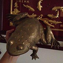 [KittyHawk]古董 銅蟾蜍