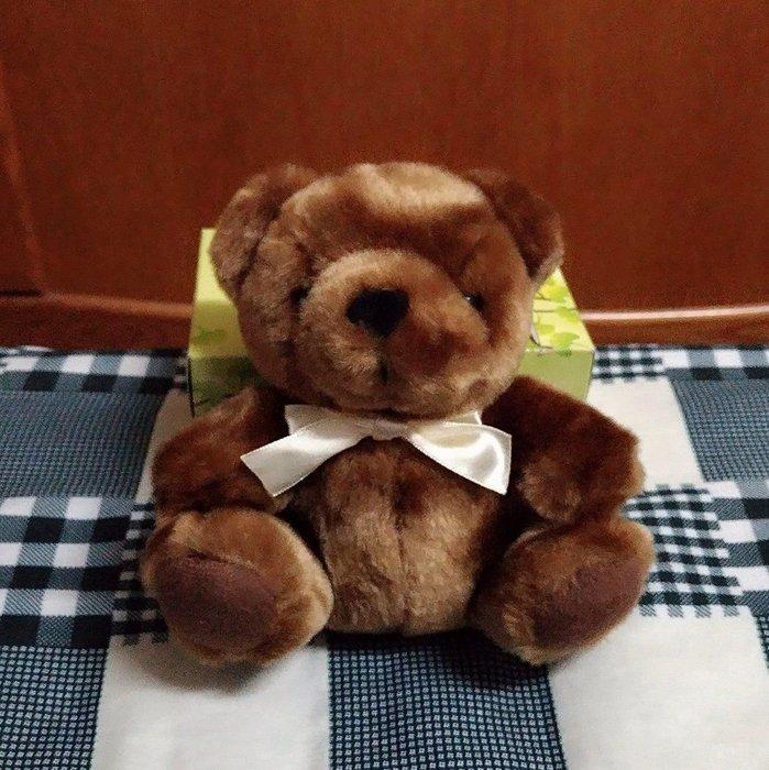 {欣娃小舖}~咖啡小熊 絨毛娃娃(高17cm)