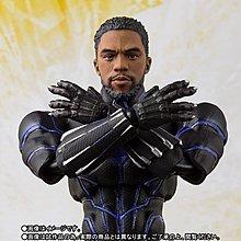 全新 行版 魂限 啡盒 Bandai SHF Marvel Avengers 黑豹 Black Panther King of Wakanda