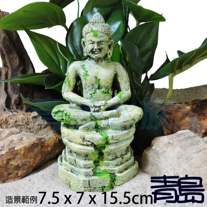 Y。。。青島水族。。。N-038台灣Oracle甲骨文-世界奇景 佛像 爬蟲 仿真 造景 守宮 蜘蛛 魚缸==佛陀坐像